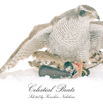 Celestial Beats selected by Kenichiro Nishihara